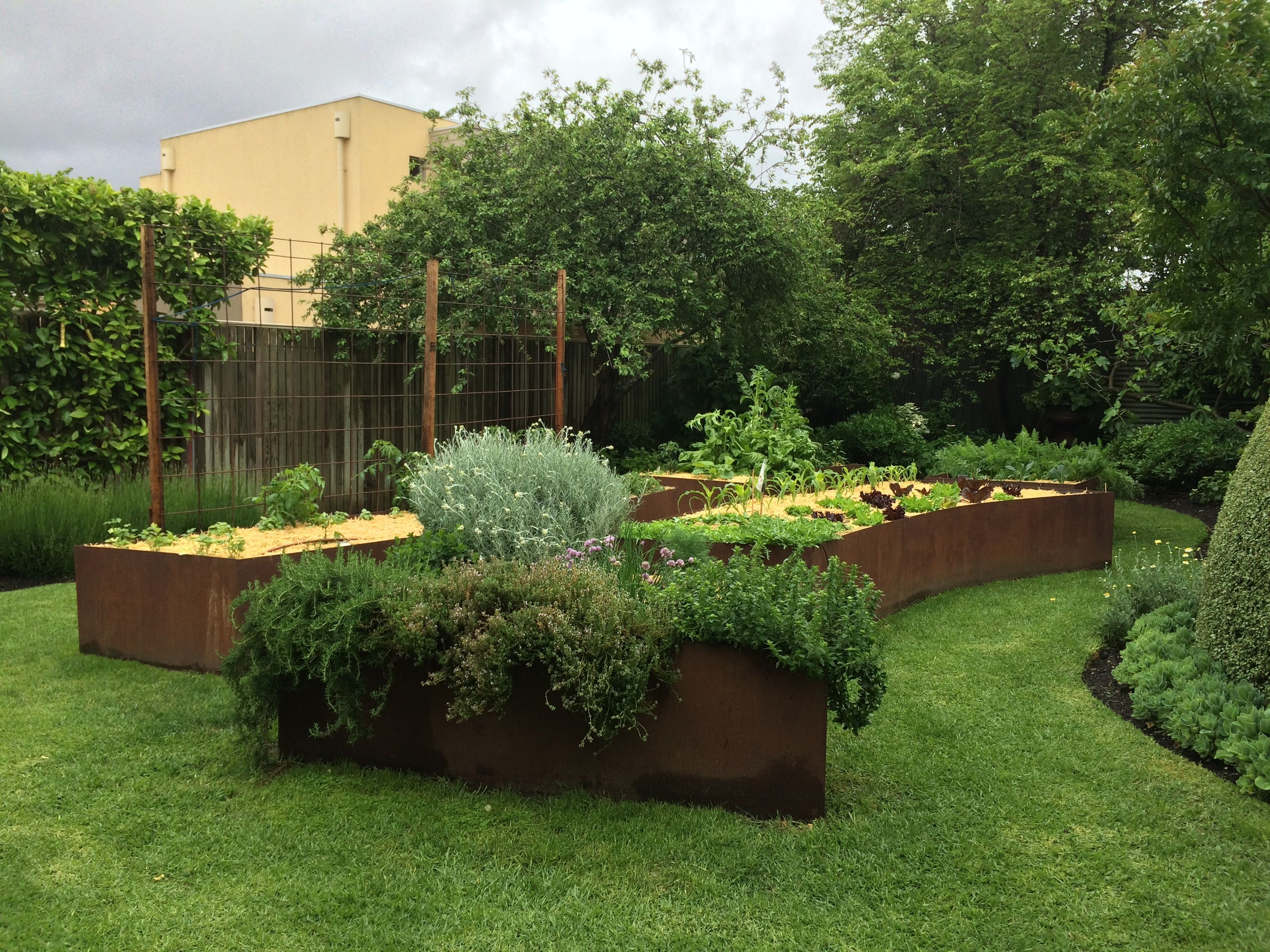 curved steel planters designed by cameron paterson melbourne cortenedible gardenvertical