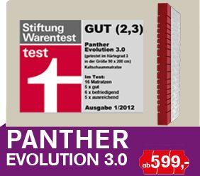 Buy 3 0 Evolution Of Mattress Panthers Http Www Prodream De