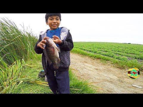 Ñiño aprendiendo a pescar tilapias