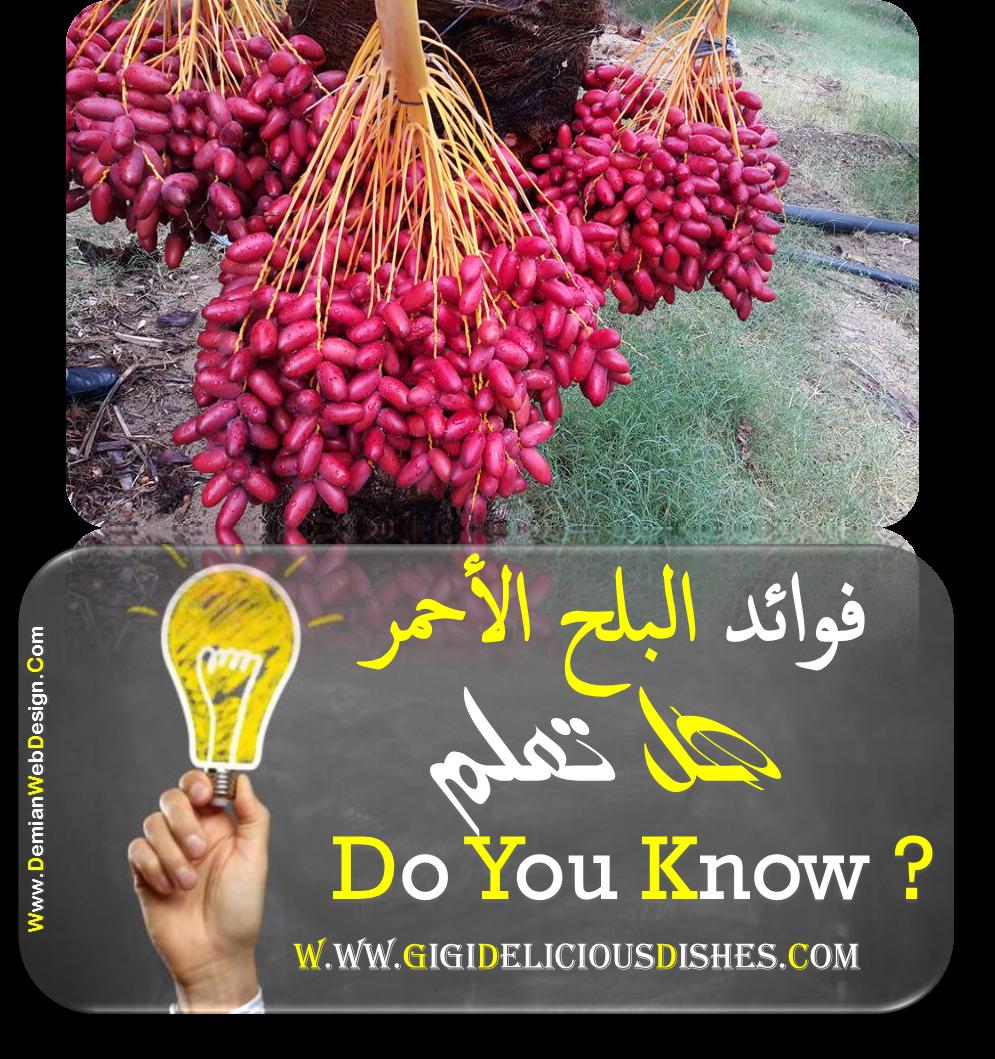 فوائد البلح فوائد البلح الاحمر يحتوى البلح الاحمر على مواد مضادة للاكسده Red Peppercorn Did You Know Condiments