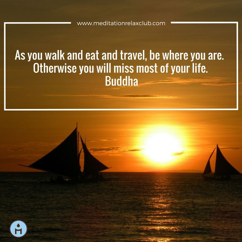As you walk and eat and travel, be where you are. Otherwise you will miss most of your life. www.meditationrelaxclub.com #inspirationalquotes #buddhaquotes