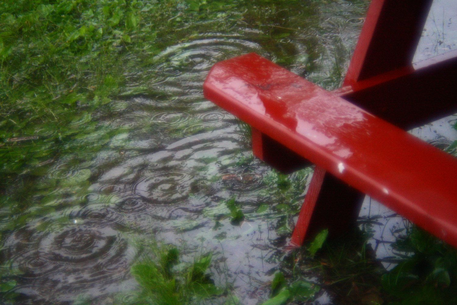 What To Do When Your Outdoor Party Gets Rained Out