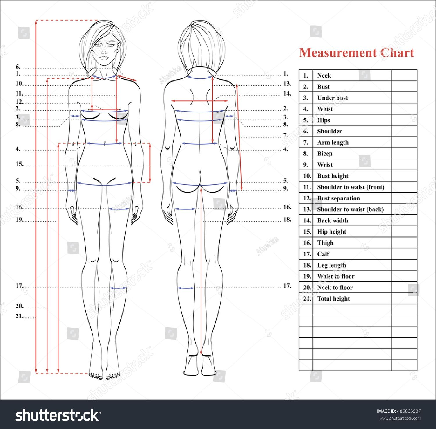 Woman body measurement chart. Scheme for measurement human body for ...