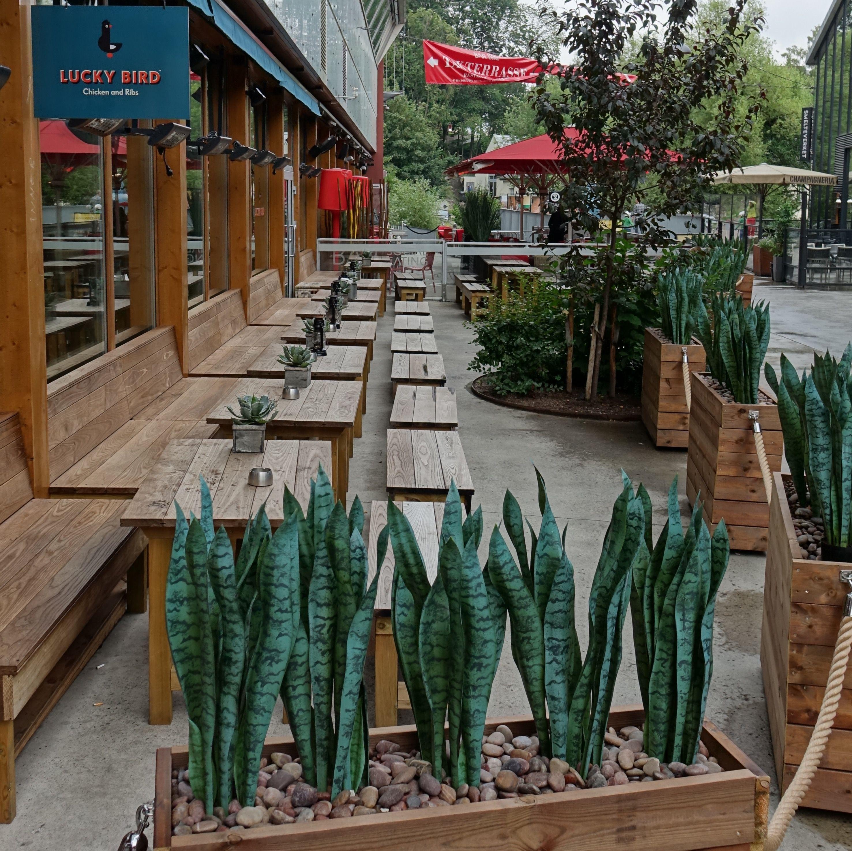 oslo | norge | vulkan | lucky bird restaurant