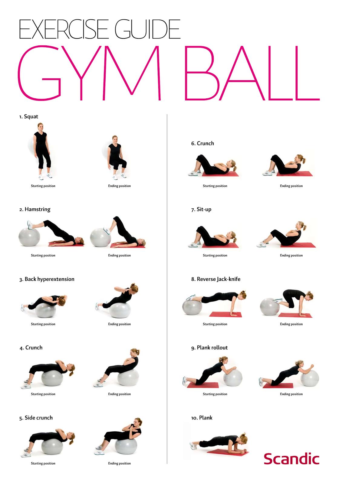 Gainage Une Activite A Ne Pas Negliger Exercices Ballon Exercice Exercices Gym Ball