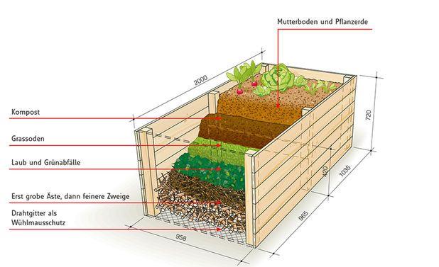 Hochbeet Bauen Selbst De Hochbeet Hochbeet Bauen Garten