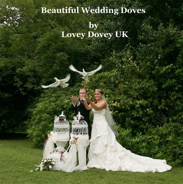 Doves Mandatory Wedding Fayre Book On Your Day Dove
