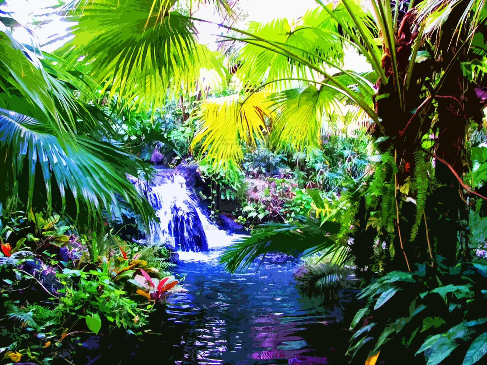 Rainbow Tropical Rainforest Waterfalls High Re Wallpaper