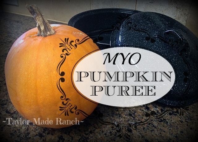 Making Pumpkin Puree.  I have a secret weapon for keeping that summer heat…