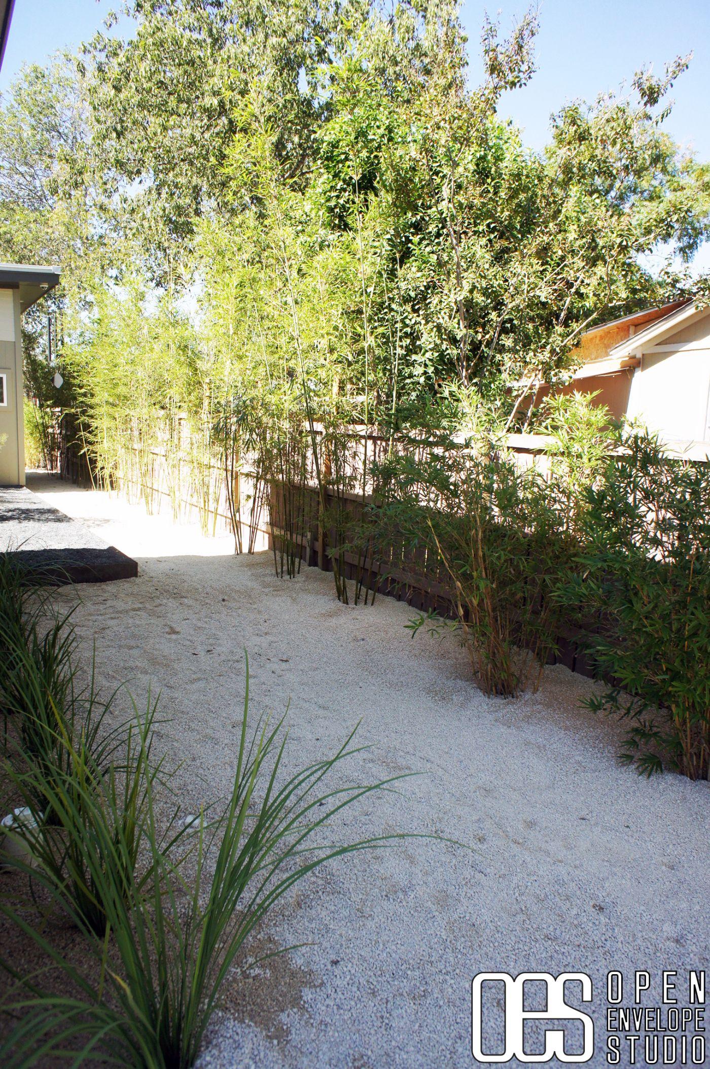 OES | Clumping bamboo, crushed limestone. Waltrip