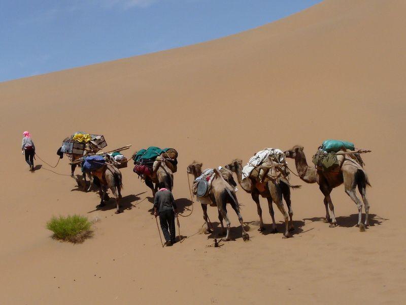 Begleitet von einer Kamelkarawane durchqueren wir in 9 Tage das Herz der Badain Jaran Wüste, ein einmaliges Erlebnis für uns alle!