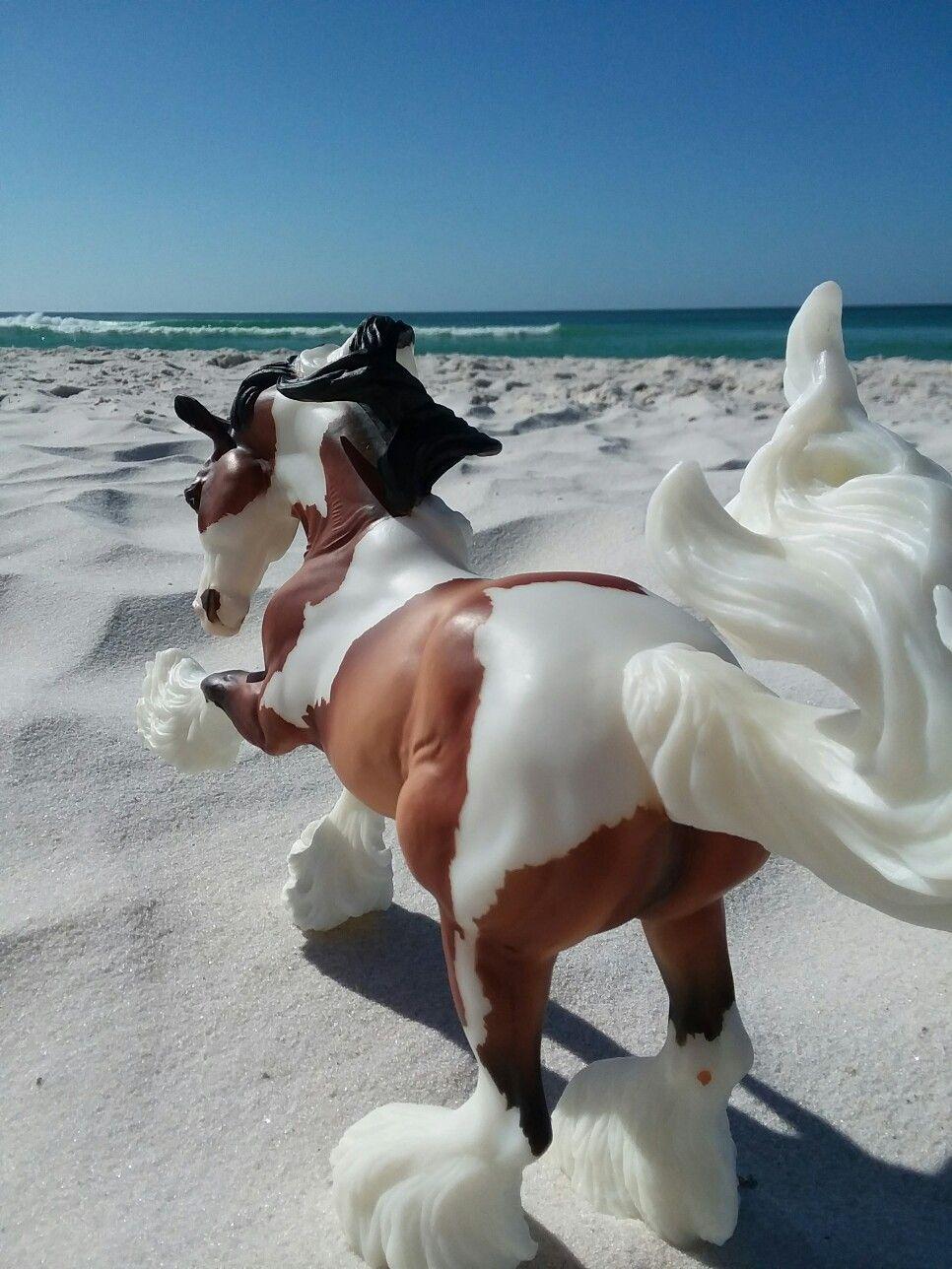 Gypsy Vaner Breyer Horse Photography Cloud On Panama City Beach Florida