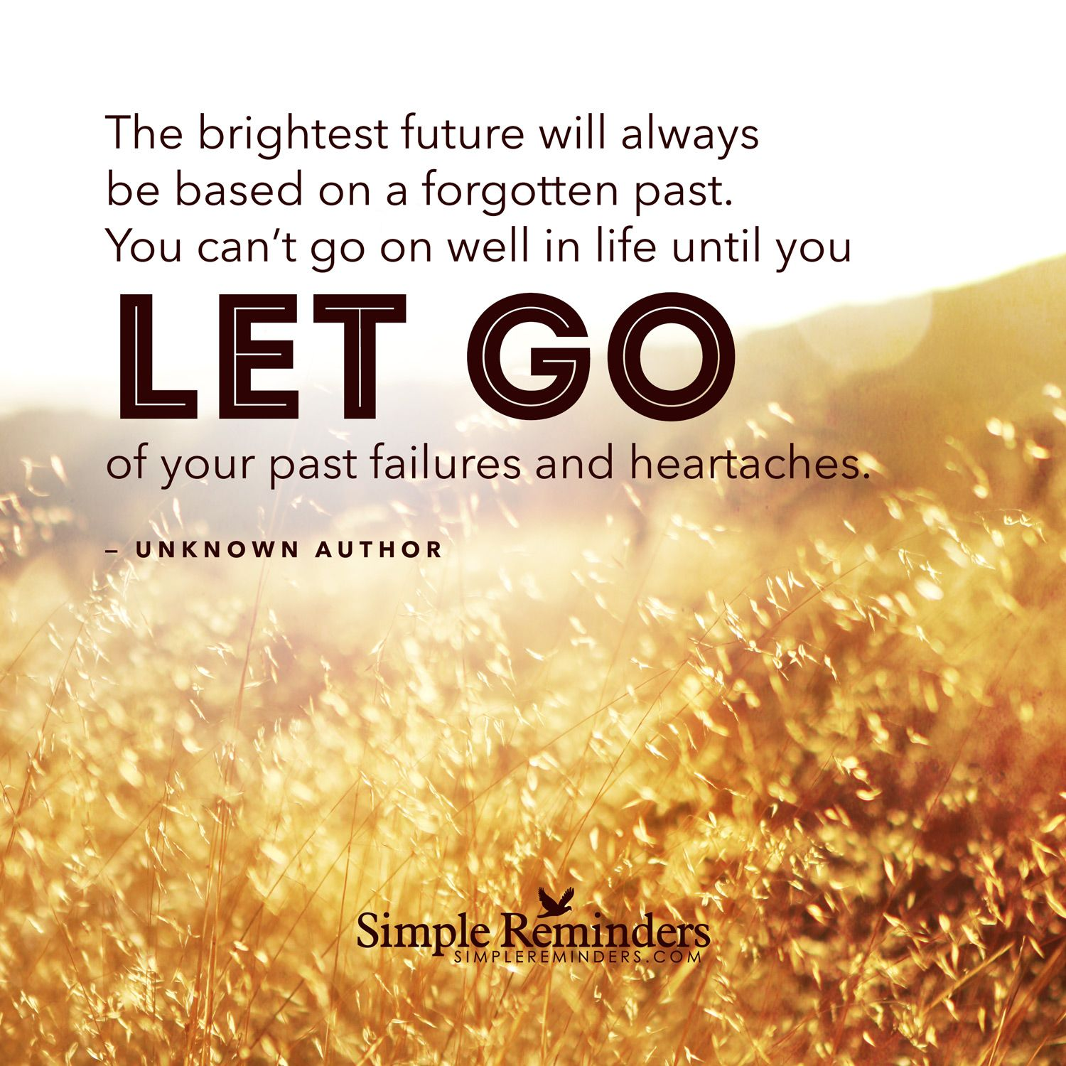 Quotes About Letting Go Of The Past: The Brightest Future Will Always Be Based On A Forgotten