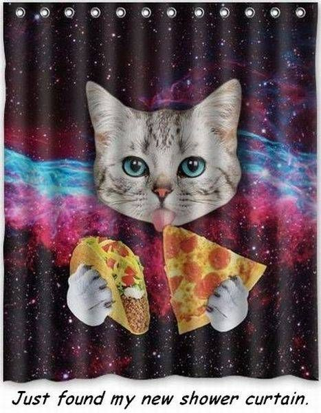 Cat Eating A Taco And Pizza Just Found My New Shower Curtain