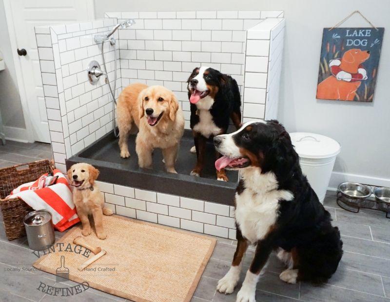 Vintage Refined Mud Room Update Dog Shower Dog Washing Station Dog Wash