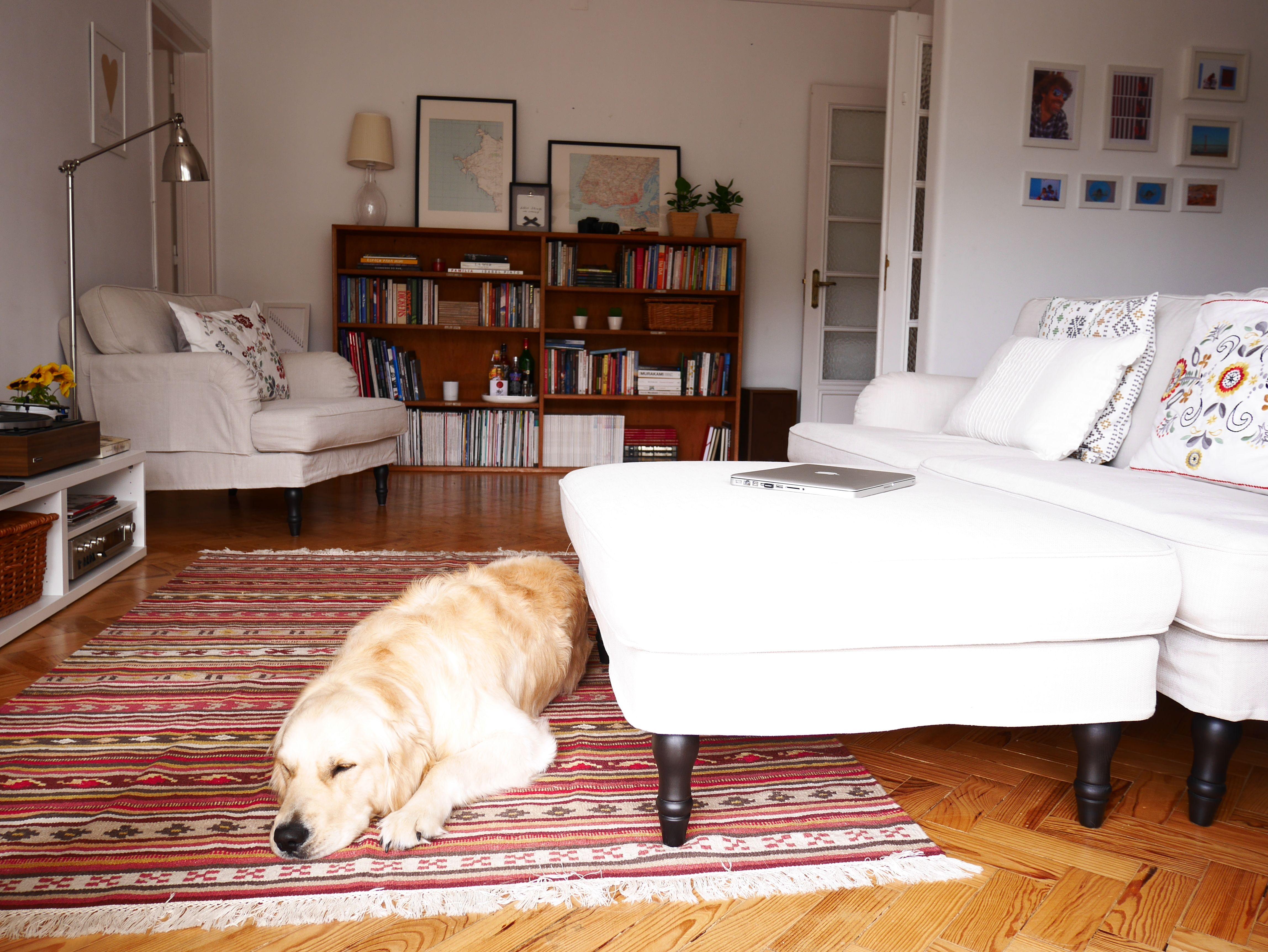 Ikea Küchenbrett ~ Best salas ger edition ikea images daybed