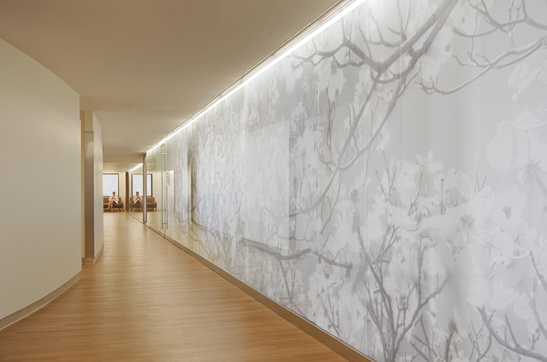 Hospital Corridor Lighting Design: PW Corridor Graphic Wood Light White Healthcare
