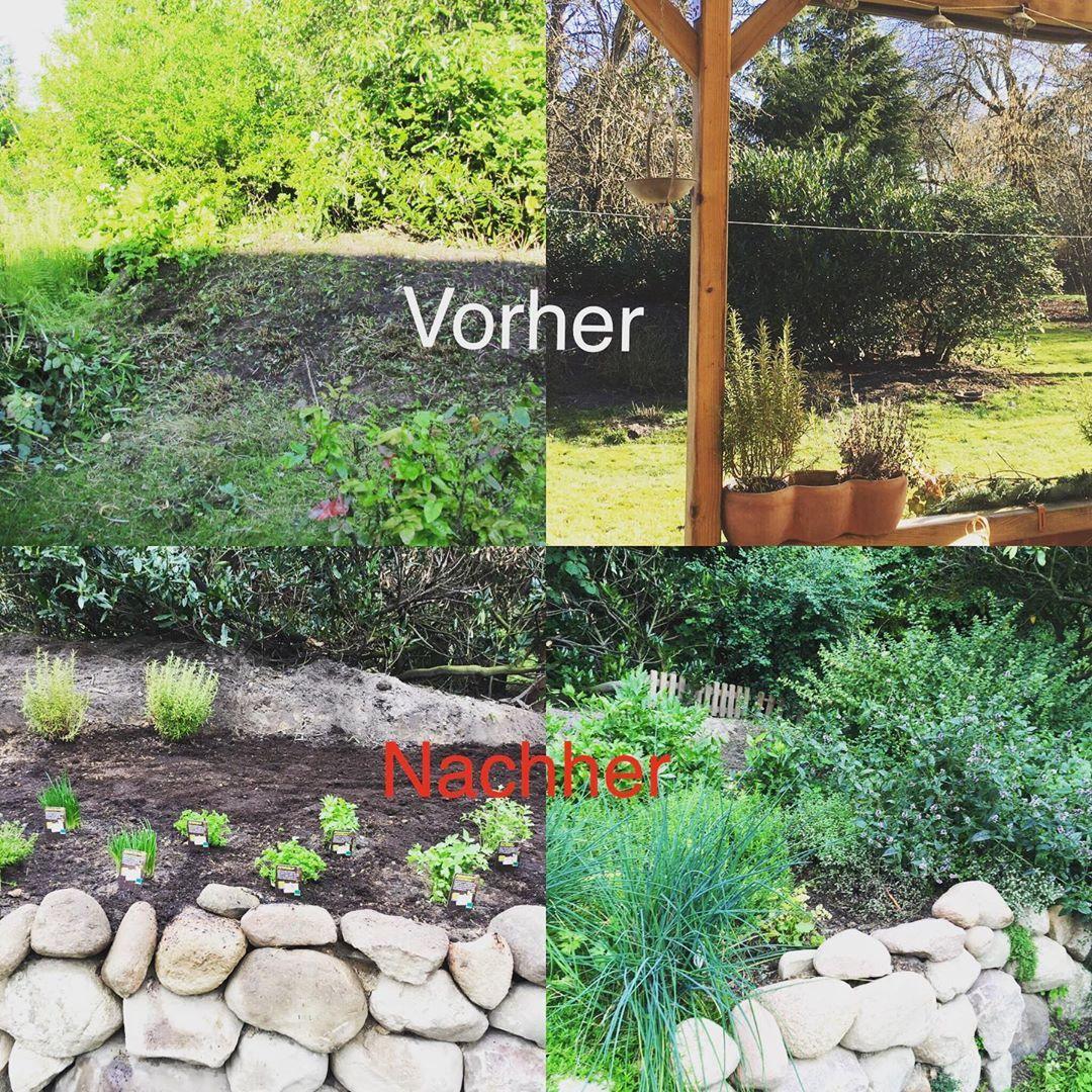Krautergarten Krautergarten Herbs Gartnern Gardening Kuchenkrauter Gardenlife Kitchenherbgarden Gartengluck Love Garten Gartengestaltung Gardening