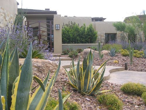 great front yard with desert
