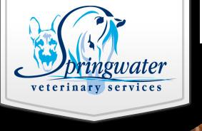 springwatervet.com