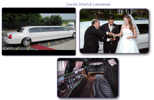 Wedding is undoubtedly a special day of your life. This big day includes a number of responsibilities to perform and a number of services to hire; wedding limousine service is one of them that must be reserved in advance in order to organize just right.