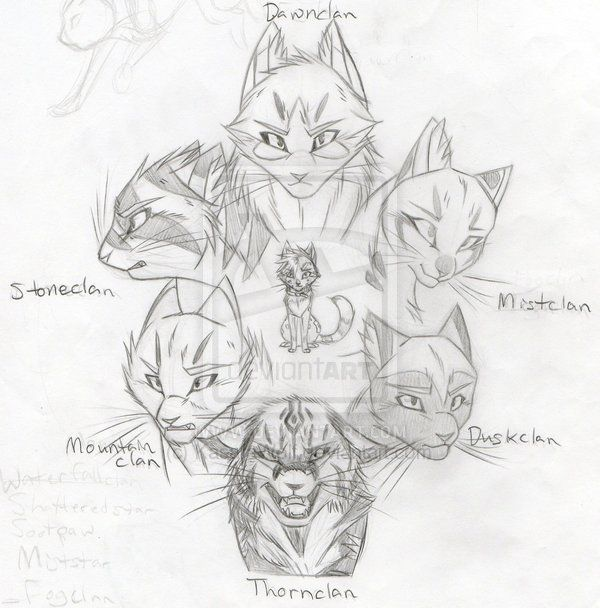 The Warriors Cats Fandom With Images Warrior Cats Warrior