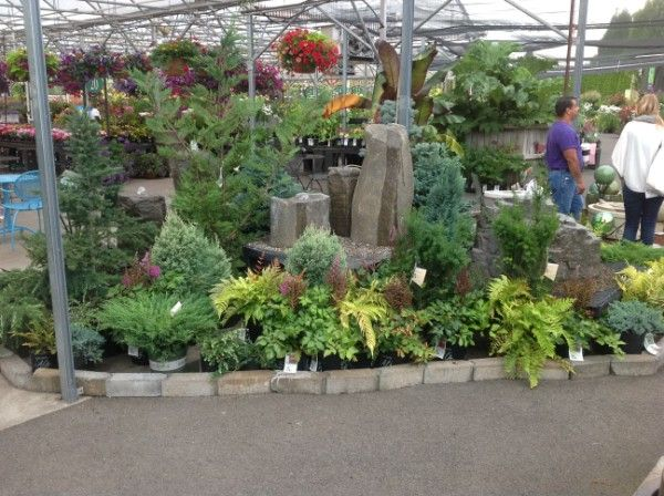 als garden center woodburn or display is all containers and fountains - Als Garden Center