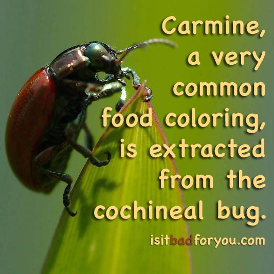 Cochineal extract carmine allergy