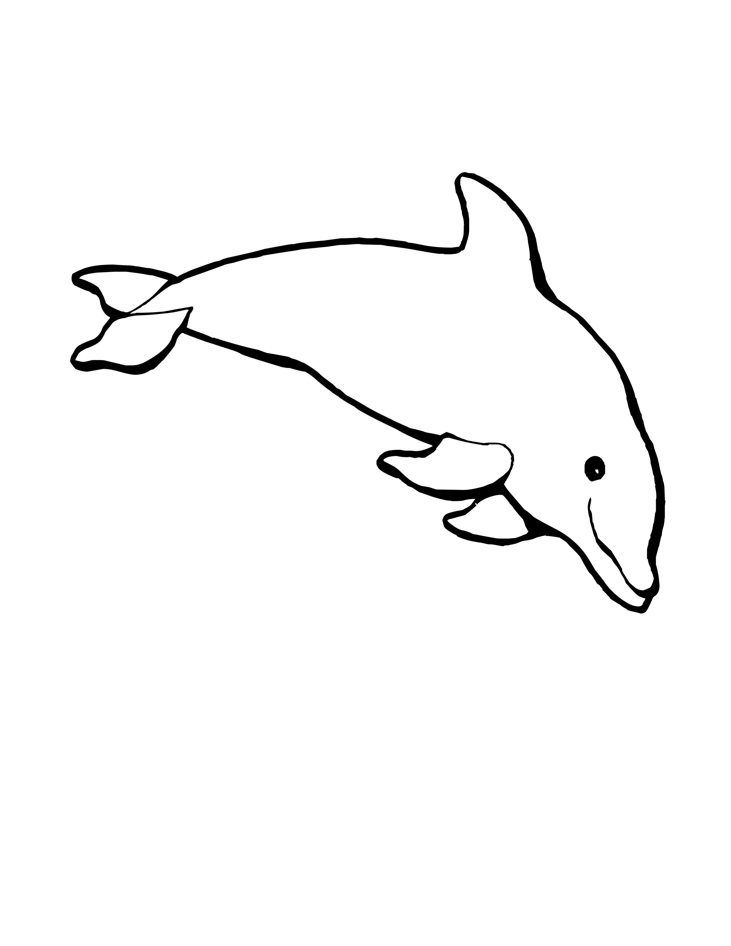 preschool dolphin craft with template