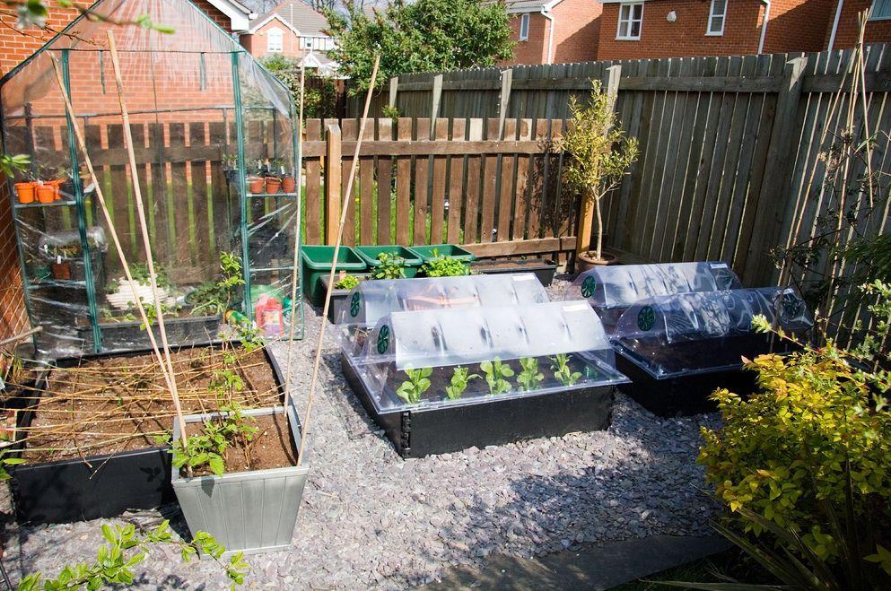 shared garden outside Pinterest Gardens, Garden landscaping