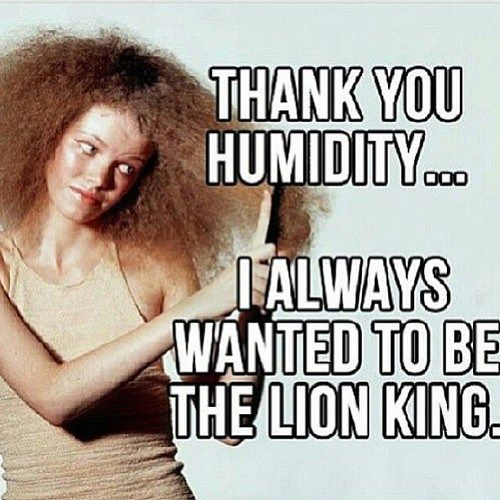 aabfe6f9ef5c7ae3d13725880807a068 28 of our favorite natural hair memes hair humidity, natural and