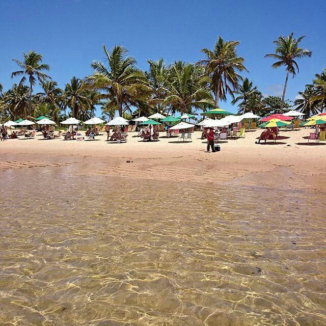 Praia do Lord, Praia do Forte, Bahia. | Praia do forte, Bahia, Viagens