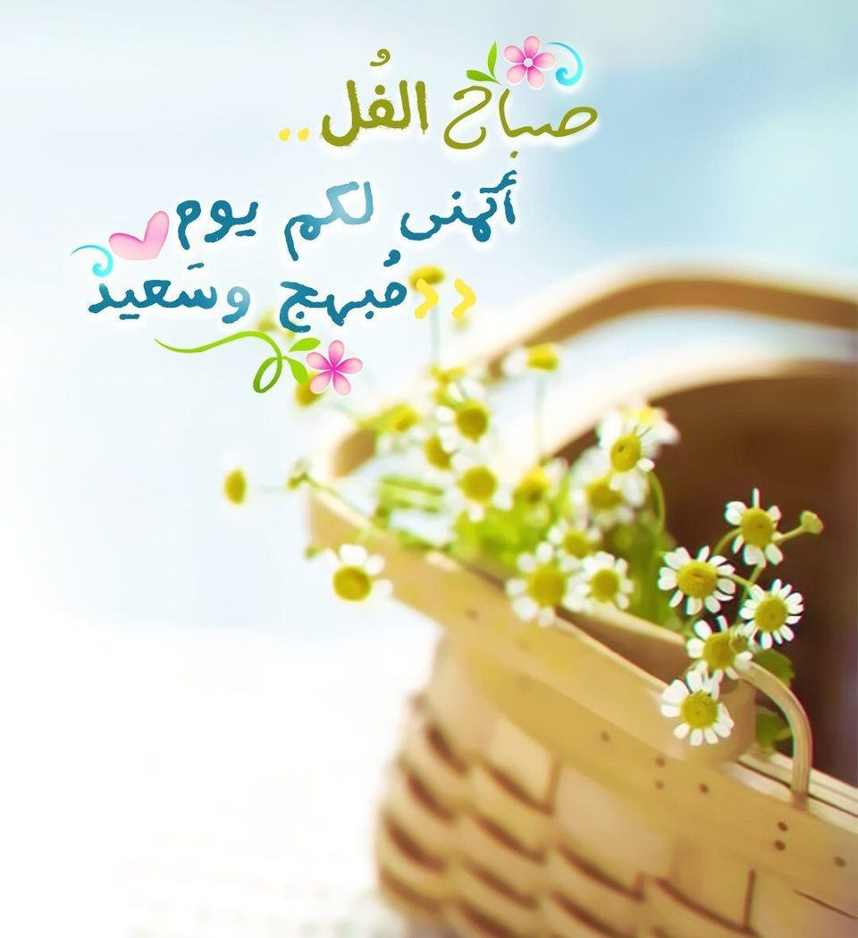 صباح الفل Morning Greeting Love Wallpaper Backgrounds Morning Greetings Quotes