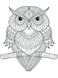 раскраски антистресс совы: 4 тыс изображений найдено в ...