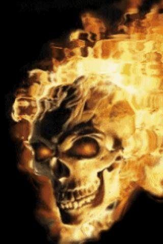 Free Skull In Fire Live Wallpaper Apk Mobile Theme Skin Download