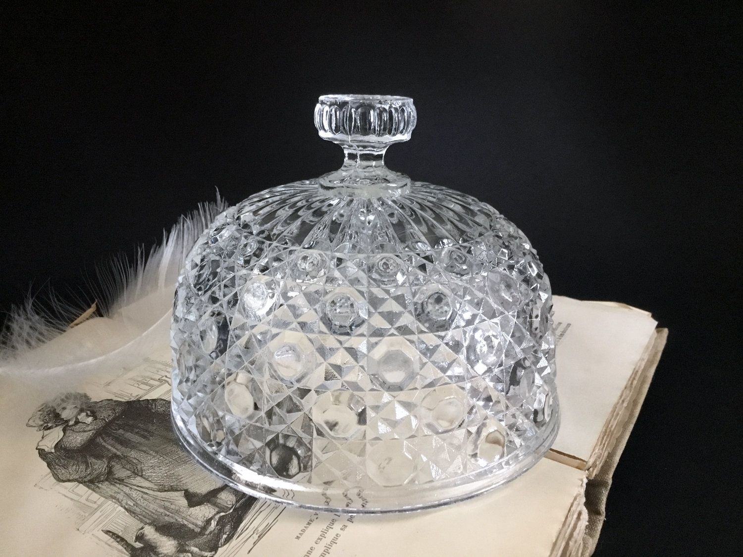 Beautiful french vintage pressed glass serving plate and matching cloche dome food protector