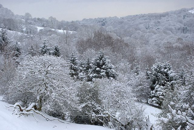 Looking Towards Etherow Country Park Compstall England Near Manchester By Keartona Via Flickr Winter Scenes Country Park Old Photos