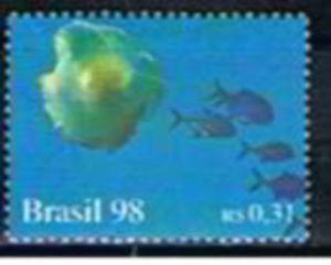 Submarine, Fish