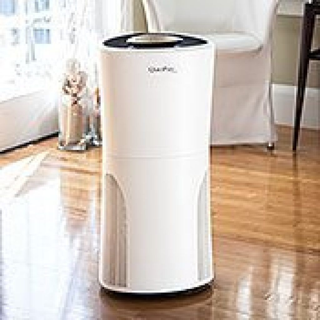 Best Air Purifier For Smoke Co Hinh ảnh