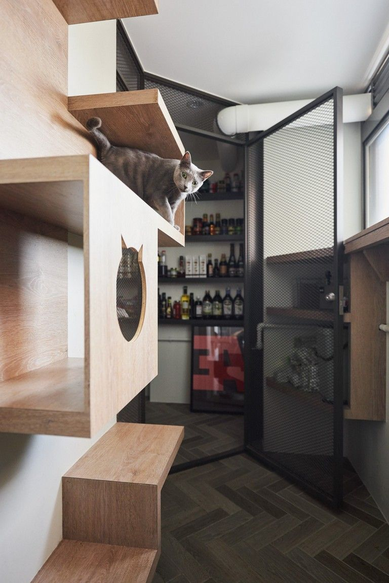 25 Good Stylish Apartment With Cozy Spots For Cats Apartmentdecor Apartmentideas