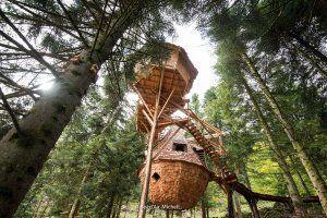 Location Cabane Dans Les Arbres Cabanes Dans Les Arbres Vosges Avec Bol D Air Cool Tree Houses Tree House Vosges