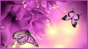 Resultado De Imagen Para Descargar Imagenes De Fondo De Pantalla Para Pc Mariposas Fondos De Pantalla Fondos De Pantalla Gratis Fondos De Escritorio