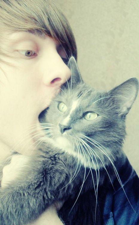 kitten nom