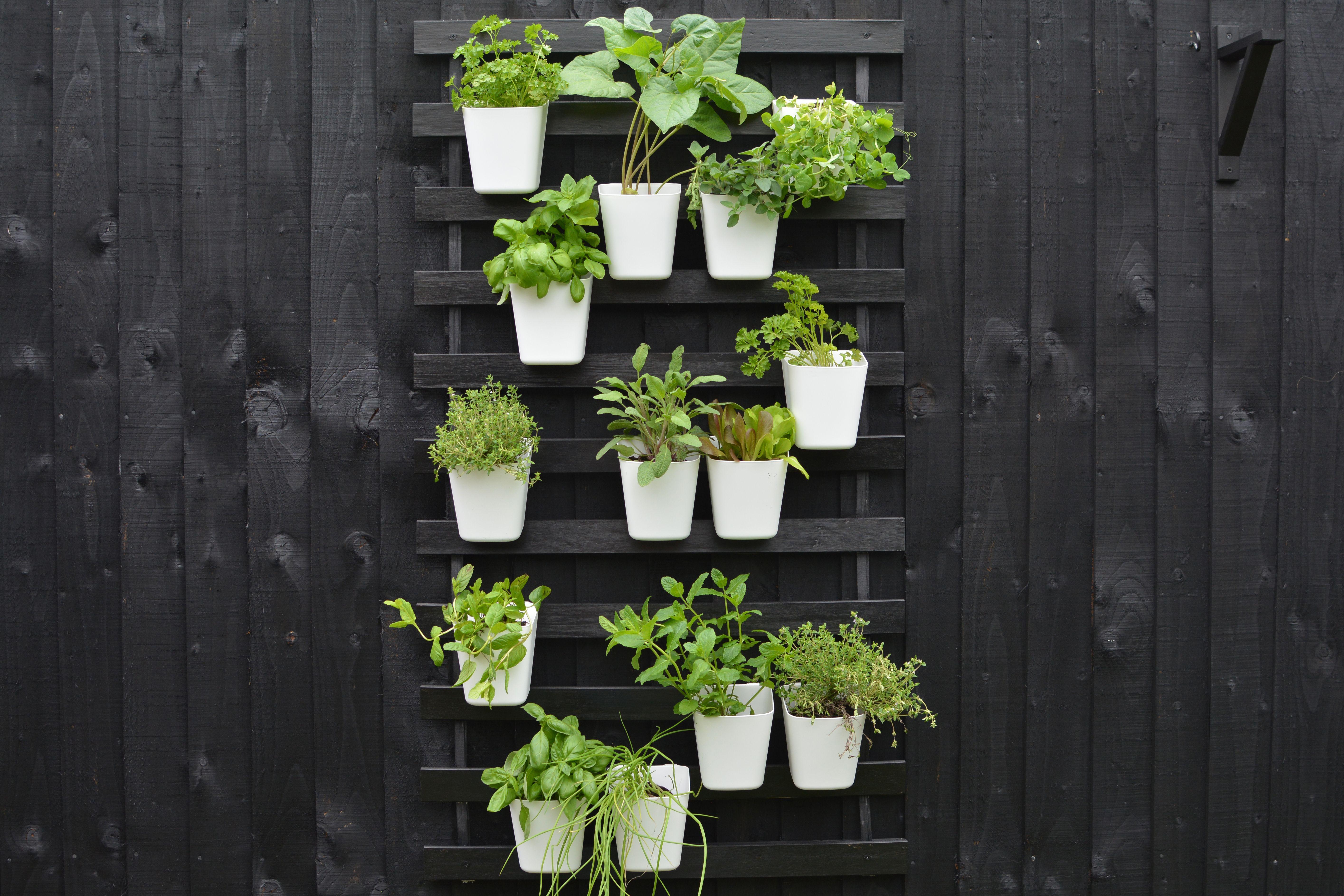 Create a modern vertical garden using ikea bed slats