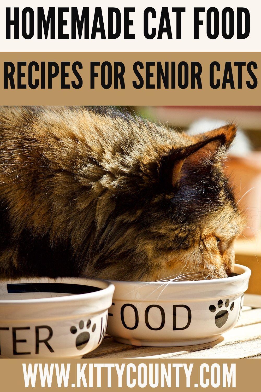Homemade Cat Food Recipes For Senior Cats Kitty County In 2020 Homemade Cat Food Homemade Cat Senior Cat