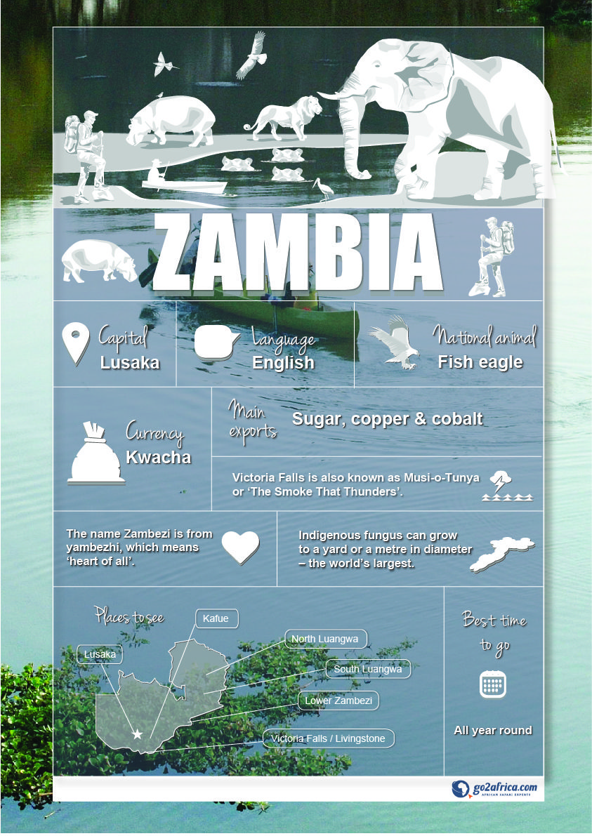 Zambia Country Information Infographic Africa Travel Africa Travel Africa Destinations Zambia Africa