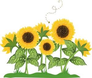 sunflower border clip art sunflowers