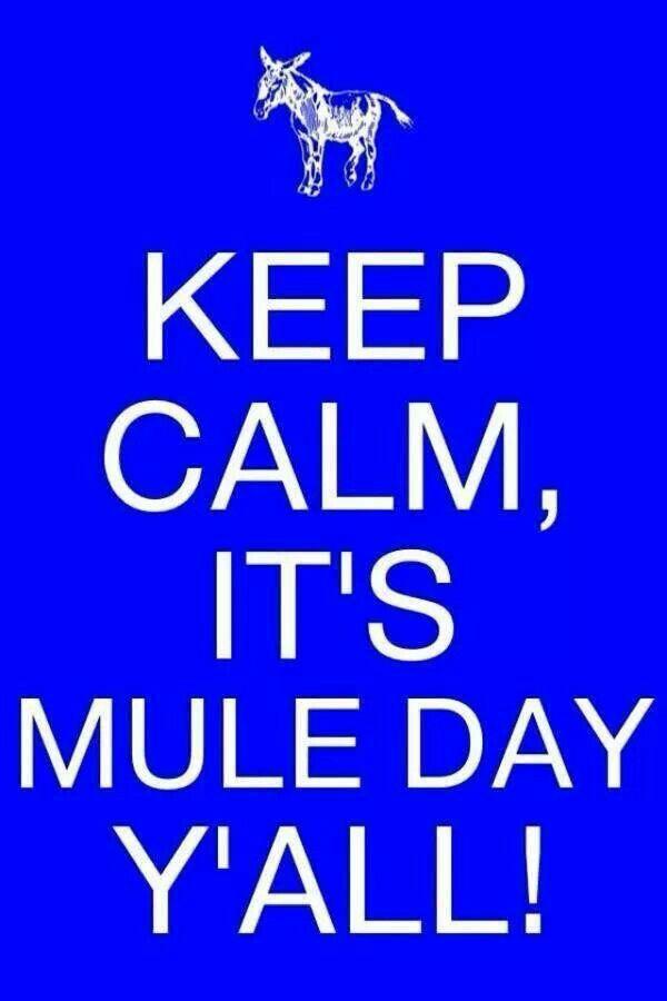 Mule Day / Columbia TN