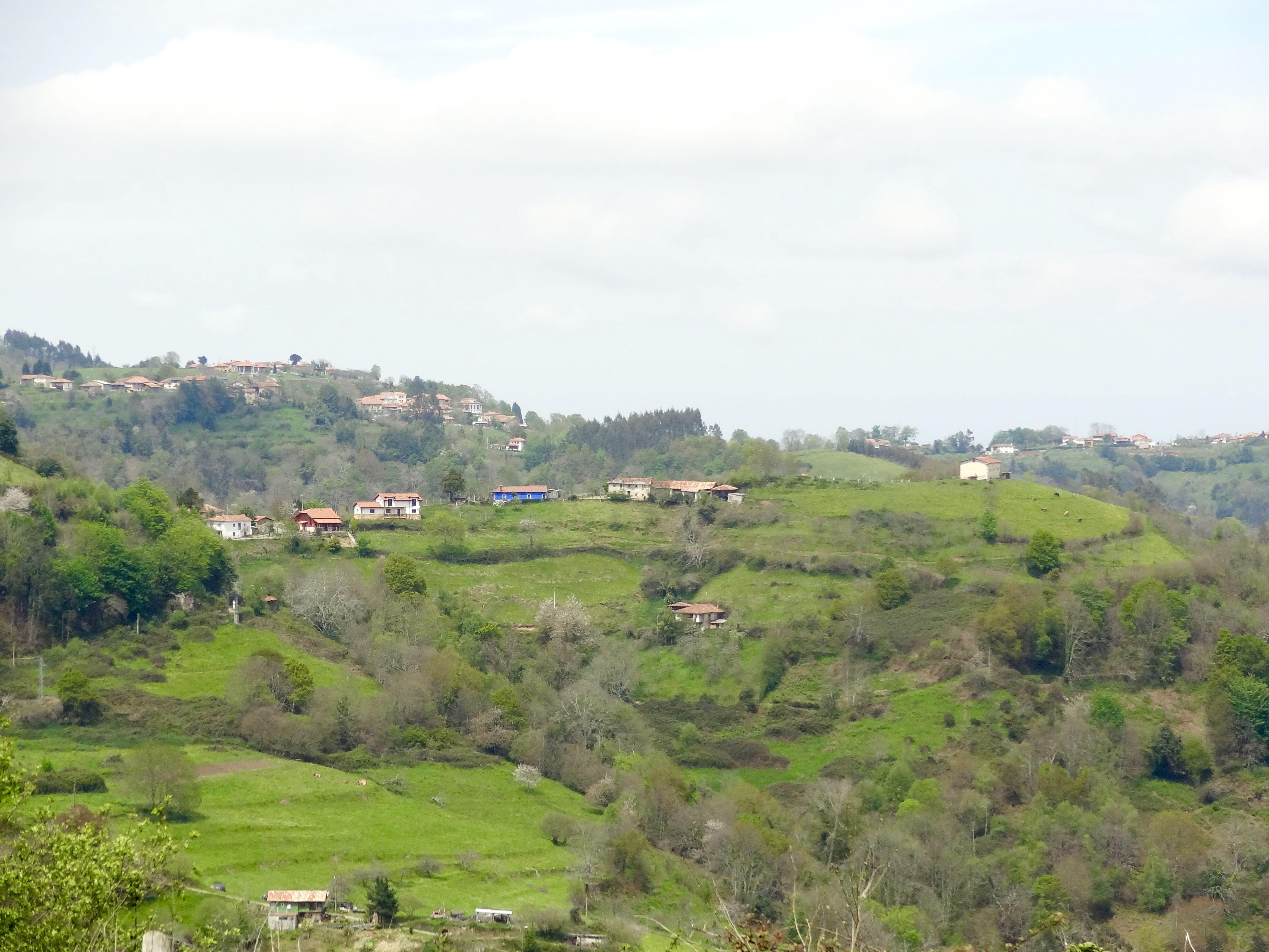 paisaje de monte asturiano en Luexe , Libaron ,Colunga - ASTURIAS . Spain