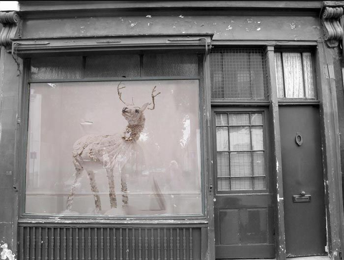Love this shop front!